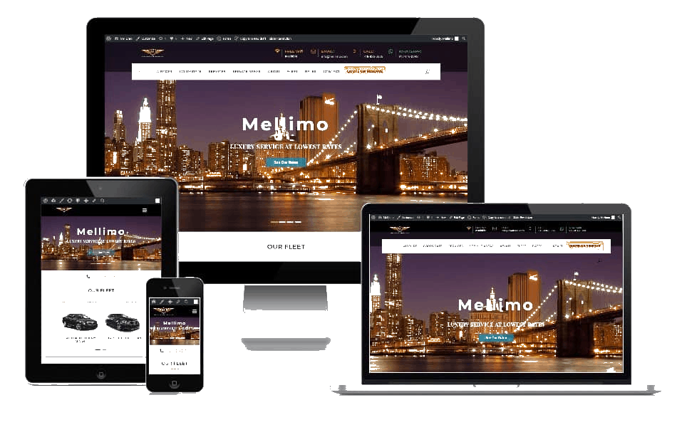 Responsive Website Limo business